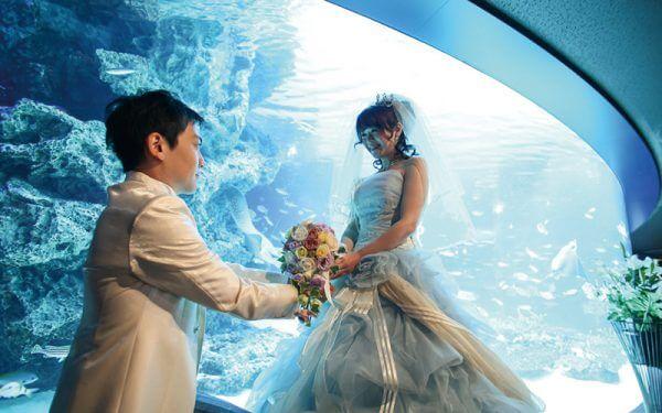 水槽の前でプロポーズ