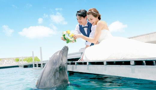 日本国内で結婚式ができる水族館まとめ!挙式のみから披露宴・写真撮影まで水族館ウェディング!