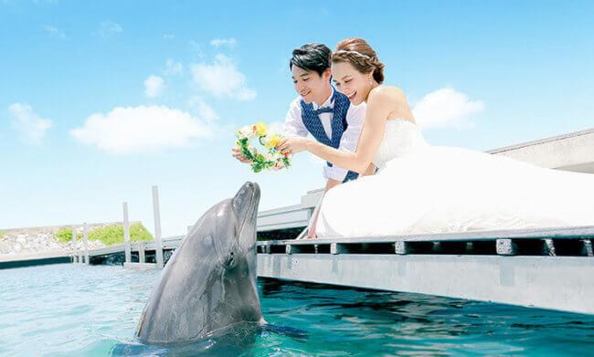 ルネッサンスリゾートオキナワでイルカと一緒に結婚式