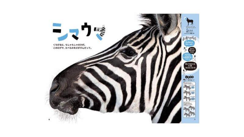 絵本ほんとの大きさ動物園
