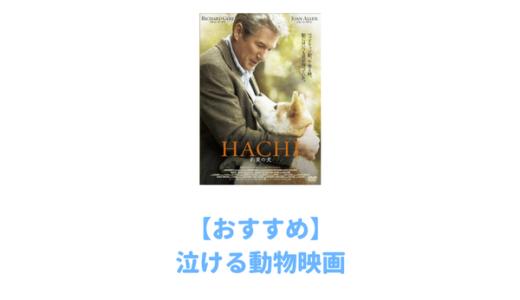 【厳選】プロが選んだおすすめ動物映画29選!泣けるものからコメディまでおすすめランキング