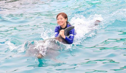 鴨川シーワールドでイルカやシャチに触れる・泳ぐ体験プログラムの整理券GET術や予約方法・割引情報を紹介