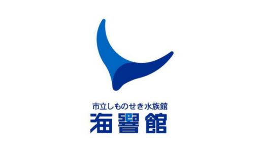【2020年最新】下関市立水族館「海響館」は割引券がいっぱい!クーポン使って入場料がお得になる方法