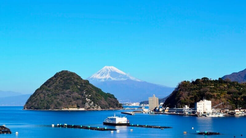 伊豆三津シーパラダイスから見える富士山