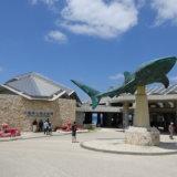 美ら海水族館のモニュメント