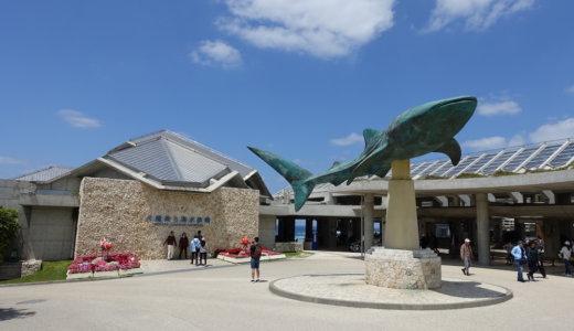 【沖縄】美ら海水族館は割引券がいっぱい!コンビニや道の駅より安くチケットを購入する方法を教える