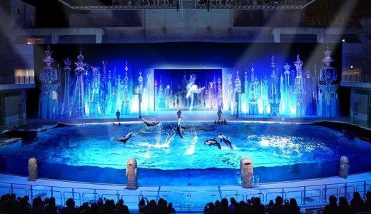 関東地方でイルカショーが見れる水族館7選|東京近郊のデートや子供連れに人気のお出かけスポット