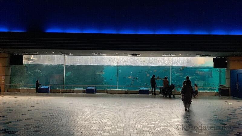 須磨水族館の大水槽