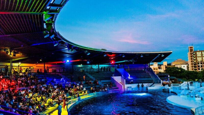 ライトアップされた京都水族館のイルカスタジアム