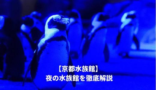京都水族館「夜の水族館2019」を徹底解説!ナイトショーはいつから?営業時間は?料金や割引情報を紹介する!