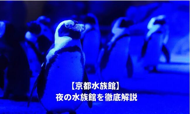 京都水族館の夜の水族館