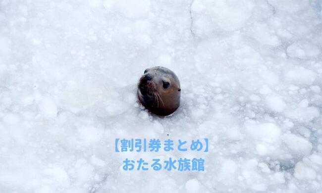 小樽水族館の割引情報