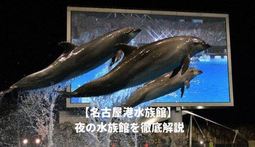 名古屋港水族館の「夜の水族館2019」を徹底解説!いつから?営業時間は?料金や割引情報を紹介する!
