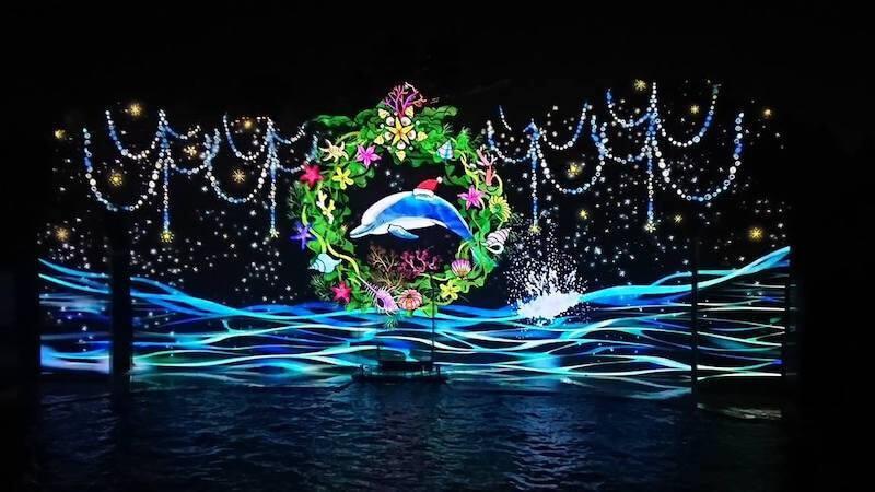 須磨水族館のイルカナイトライブ