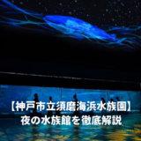 須磨水族館の夜の水族館