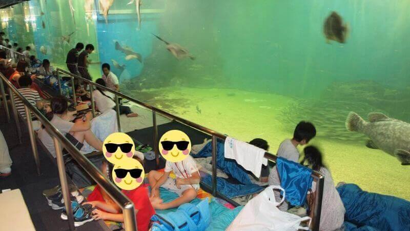 越前松島水族館のお泊り水族館