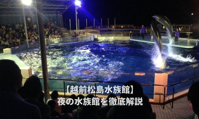 越前松島水族館の夜の水族館