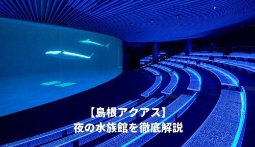 島根アクアスの「夜の水族館2019」を徹底解説!開催期間はいつから?夜間営業の時間は?料金や割引情報を紹介する!