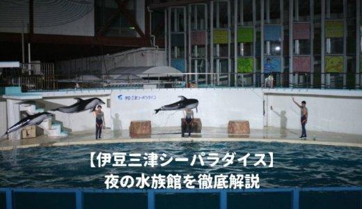 伊豆三津シーパラダイスの「夜の水族館」を徹底解説!ナイトショーはいつから?夜間営業の時間は?料金や割引情報を紹介する!