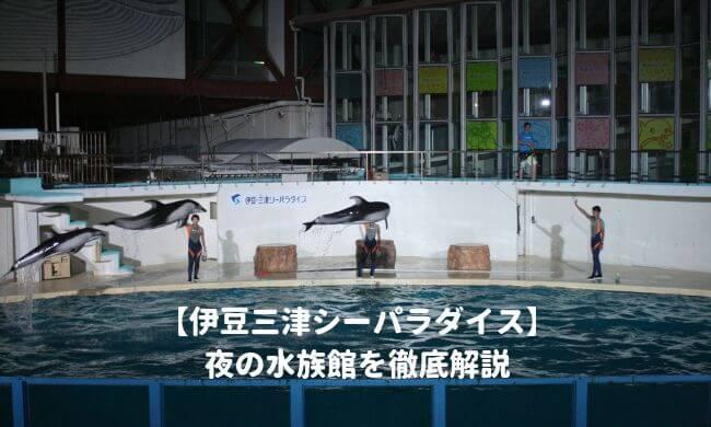 伊豆三津シーパラダイスの夜の水族館