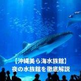 美ら海水族館の夜の水族館