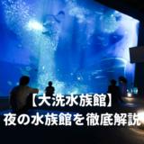 大洗水族館の夜の水族館