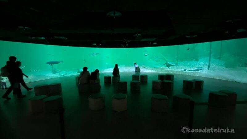 川崎水族館のプロジェクションマッピング