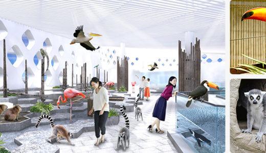 大阪吹田市にオープンした話題の新しい水族館「ニフレル」はここがすごい!