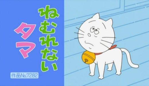 猫を飼うときの注意点|サザエさん家の『タマ』の飼い方について苦言を呈す