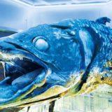マニアックすぎる水族館