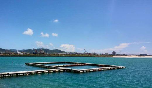 沖縄県石垣島でイルカと泳ぐ!「ドルフィンファンタジー」の予約方法と割引情報【おすすめ】