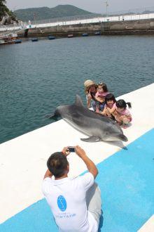 イルカと一緒に写真撮影
