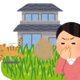 猫のおしっこ対策