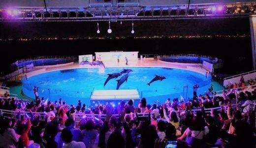 マリンワールド海の中道「夜の水族館2017」を徹底解説!開催期間は?イルカショーの時間は?